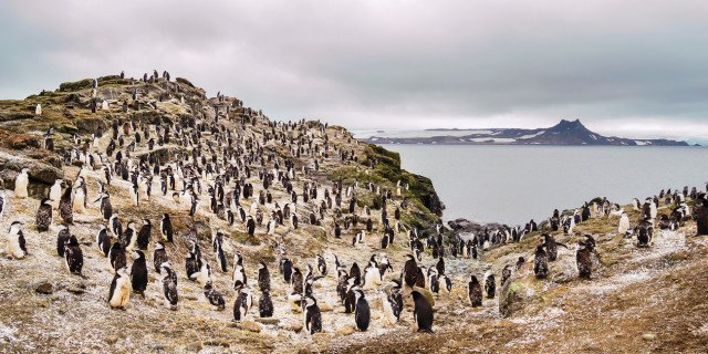 Apertura-Antartida