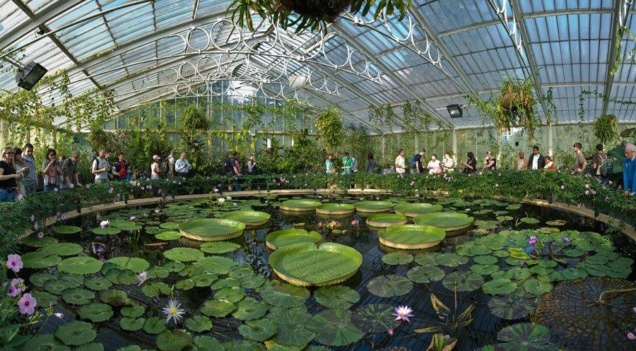 Royal Botanic Kew Gardens. El jardín cuenta con plantas de todos los continentes preservadas con sistemas especiales de calefacción o de ventilación, ideales para mantener el hábitat de las especies.